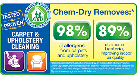 Healthy Home Image for Kill Devil Hills Chem-Dry