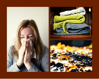 Fall Allergy Image
